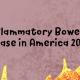 IBD In America 2019